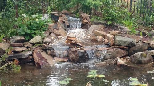 Stream & Waterfall4
