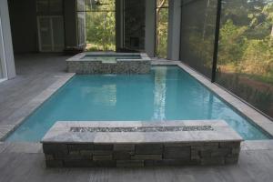 Pool/Spa, Silver Trav, Linear Fire Feature
